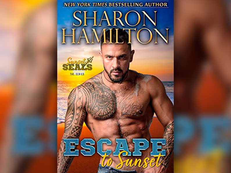 Escape To Sunset: One Night Stand Romance